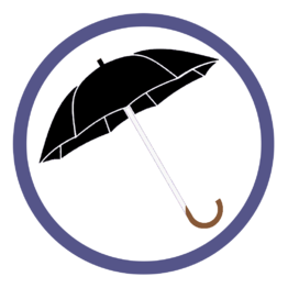 Черные зонты трости