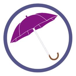 Фиолетовые зонты трости