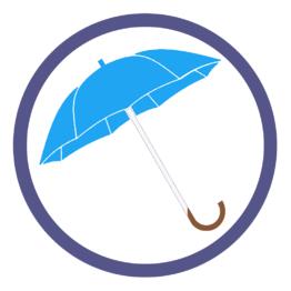 Голубые зонты трости