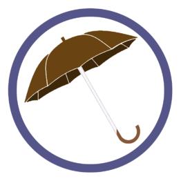 Коричневые зонты трости