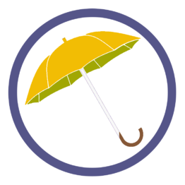 Оранжевые зонты трости