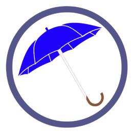 Синие зонты трости
