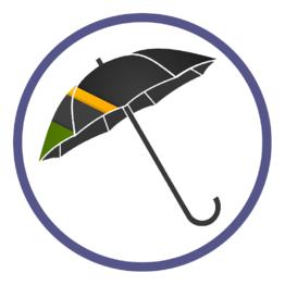 Мужские зонты трости