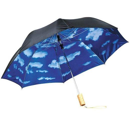 Зонт Blue skies 21 двухсекционный полуавтомат, черный