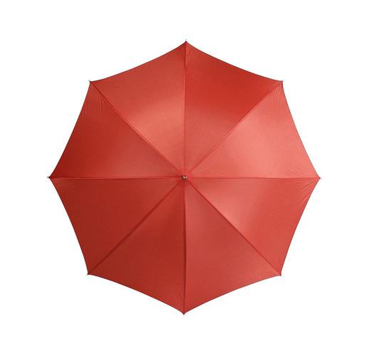 Зонт-трость Рэйн