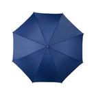 Зонт-трость Winner