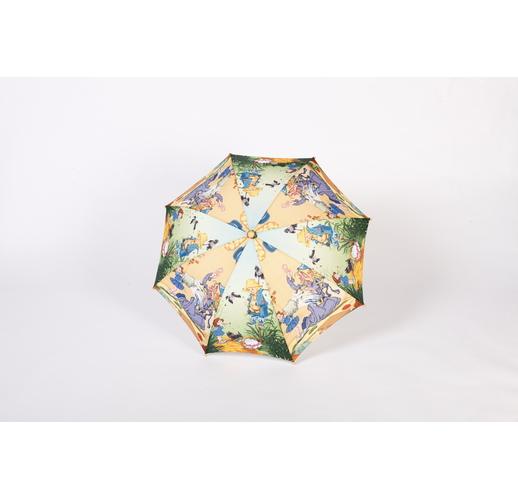 21665 Зонт