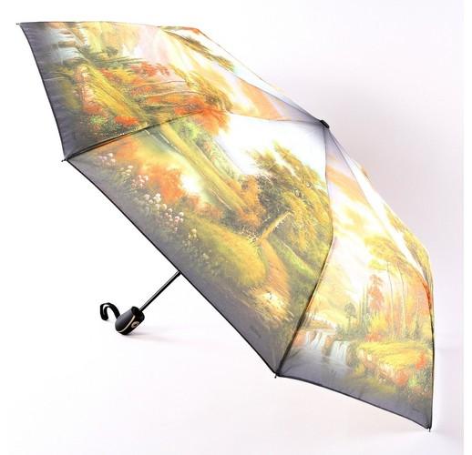 3685 Зонт