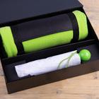 Набор подарочный RAINY DAY: зонт складной, механический, плед, коробка,  светло-зеленый