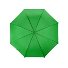 Зонт-трость Яркость