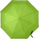 Автоматический зонт (светло-зеленый)